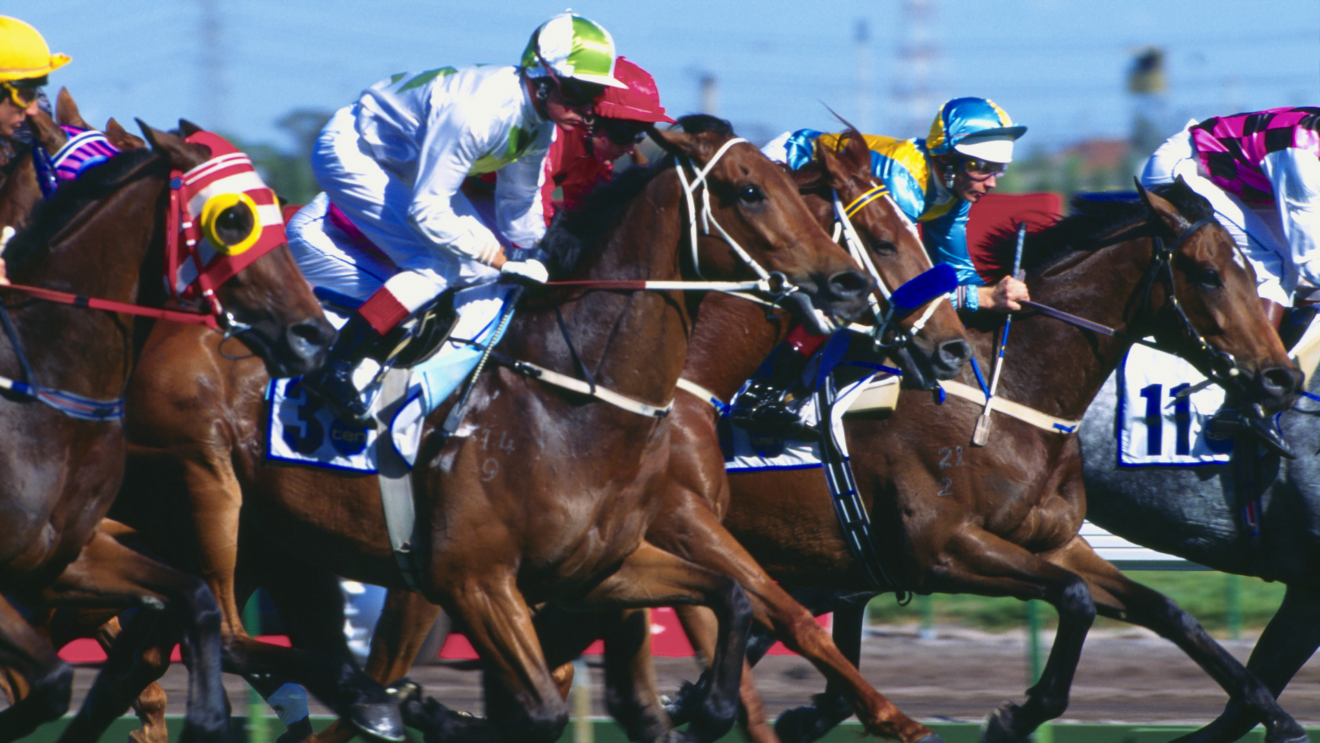 what time is melbourne cup race in qld