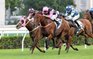 Hong Kong Horse Race